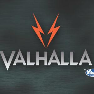Кии для пула VIKING VALHALLA